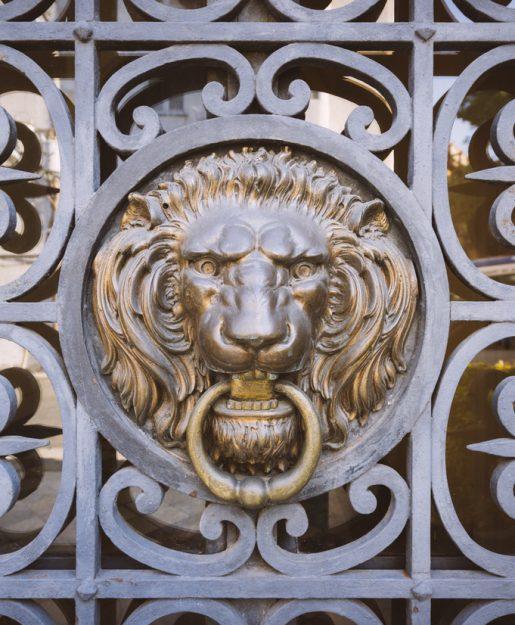 Opportunity Knocks (Lion)